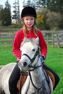 top_equestrian_boarding_schools_