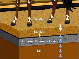 Save Money On Horse Bedding By Installing Ggt Stall Ez