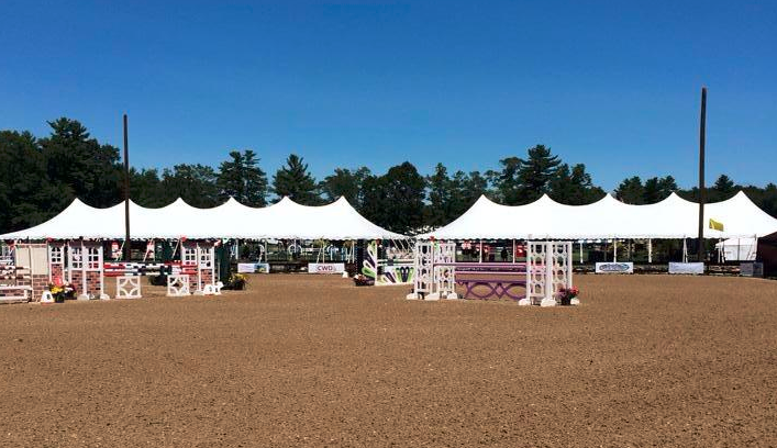 Fieldstone Show Park : Equestrian footing and horse lameness