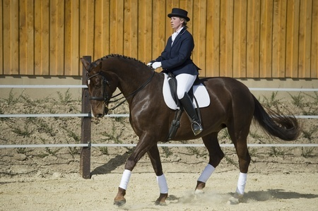 GGT Dressage Footing