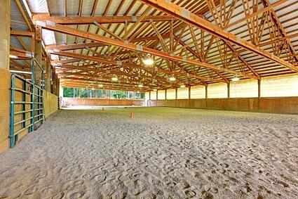 Outdoor Arena Lights: For indoor arenas, consider installing waterproof light fixtures. Yes,  there is a roof, but what about the sprinkler system. In an outdoor arena,  the lights ...,Lighting