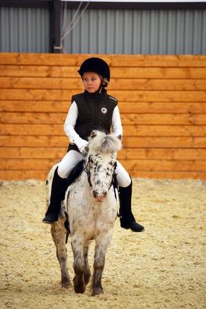 Indoor_Riding_arena